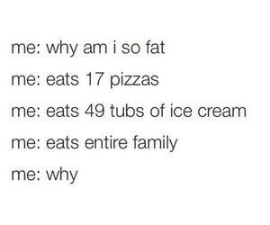 food, funny, and fat image