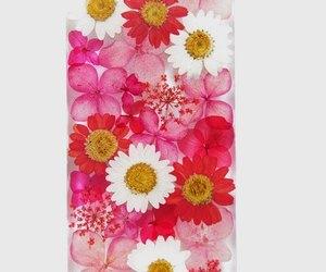 apple, handmade, and pressed flowers image
