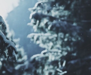 cold, december, and forest image