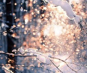 lights, winter, and snow image