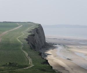 nature, green, and sea image