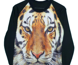 big cat, sweatshirt, and teen clothes image
