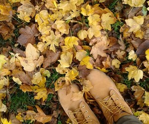 chaussures, timberland, and autonme image