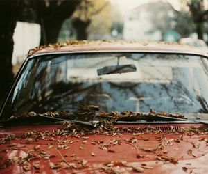 amazing, car, and autum image