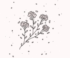 flowers, tumblr, and wallpaper image