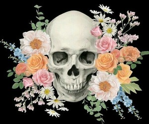 skull, daisy, and flowers image
