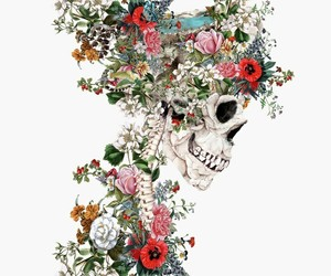 art, flowers, and skull image