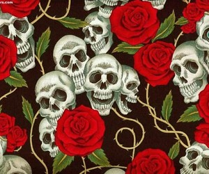skull and rose image