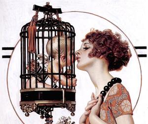 illustration, vintage, and cage image