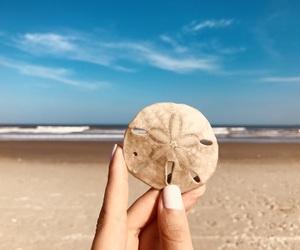 beach, girly, and hand image