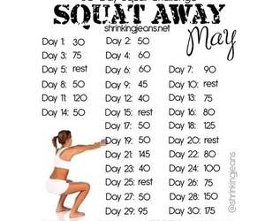 squats and fitness image
