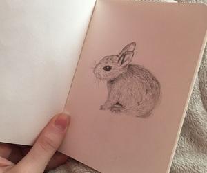 bunny, minimalistic, and pink image