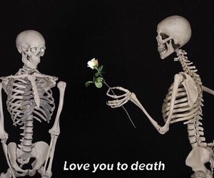death, flower, and tumblr image