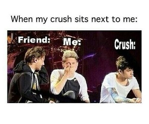 crush, funny, and one direction image