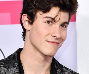 shawnmendes
