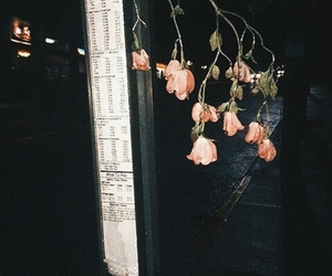 flowers, dark, and aesthetic image