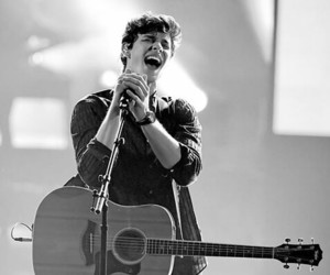 amas, shawn mendes, and mendes army image