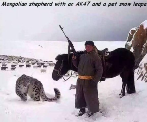 goals, snow leopard, and funny meme image