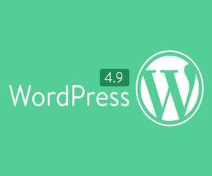 wordpress developers, wordpress 4.9 features, and wordpress 4.9 tipton image