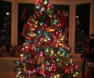 christmas, colourful, and tree image