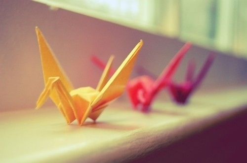 bird, origami, and colours image