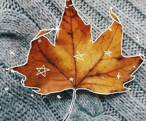 autumn, leaf, and aesthetic image