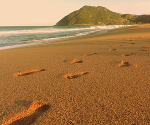 beach, footsteps, and mar image