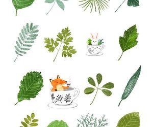 bunny, fox, and green image