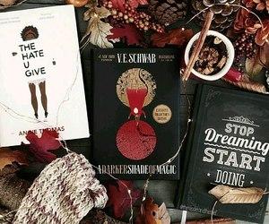 autumm, books, and fall image