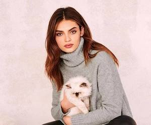 cozy, knit, and turtleneck image
