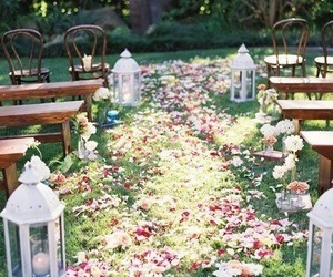 flowers, wedding, and garden image