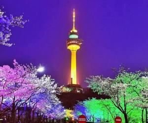 namsan tower image