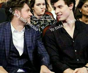 meme, niall horan, and shawn mendes image