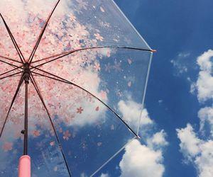sky, umbrella, and pink image