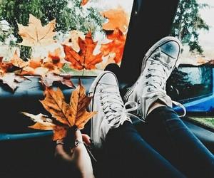 adventure, autumn, and explore image
