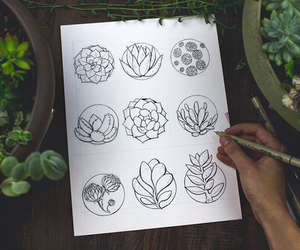 art, succulents, and drawing image