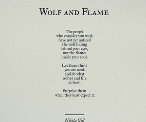 flame, wolf, and quotes image