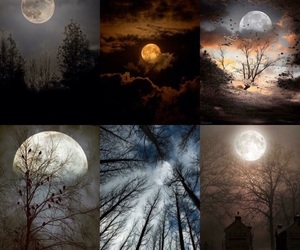 moon, beauty, and night image