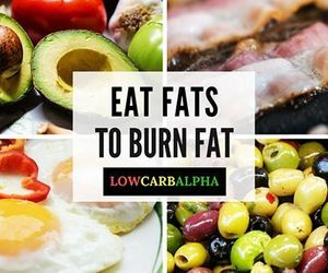 fat, lowcarb, and nutrition image