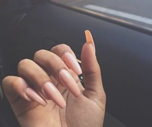 beauty, hand, and nails image