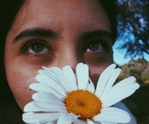 blue eyes, daisy flower, and flores image