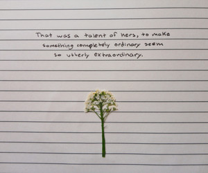aesthetic, flowers, and journal image