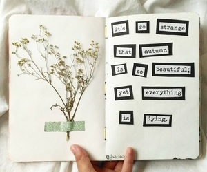 aesthetic, chic, and journal image