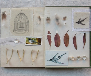 book, feather, and journal image