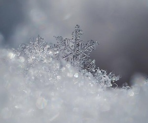 snow, snowflake, and cold image