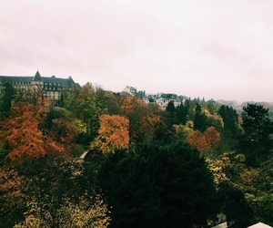 autumn, luxembourg, and travel image