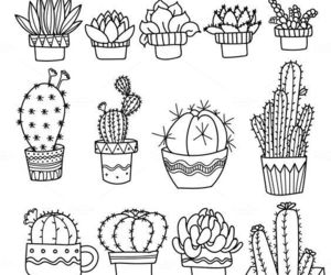 cactus, draw, and ideas image
