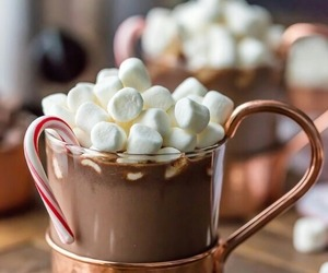 hot ​chocolate, christmas, and food image