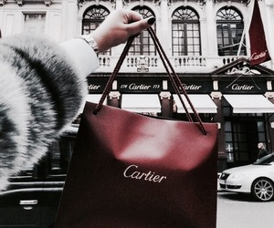 fashion, cartier, and luxury image