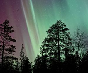 night, northernlights, and sky image